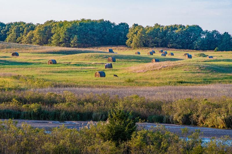 Horn Ranch-2-14.jpg