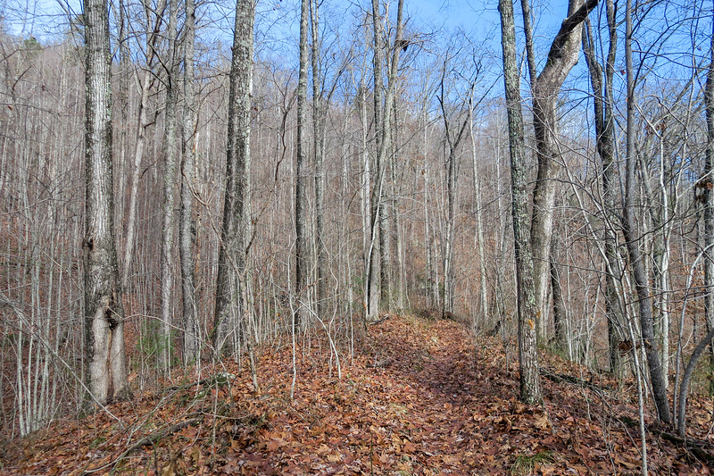 Appalachian Trail -- 2,080'