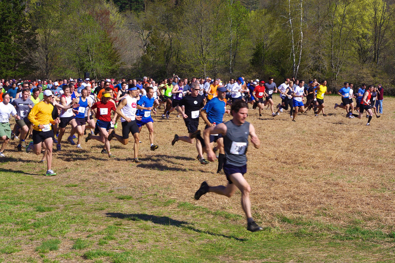 Meadow start in 2011. Photo by Brian .