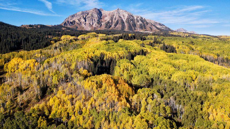 Beckwith Mountain (East)