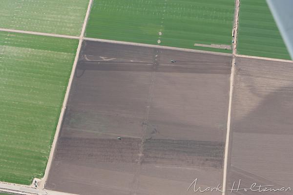 California Farms