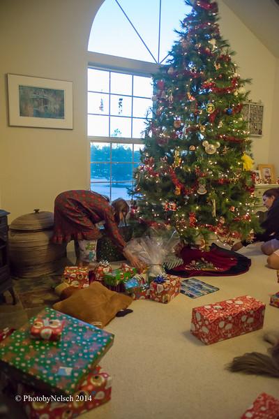 Christmas 2014-183.jpg