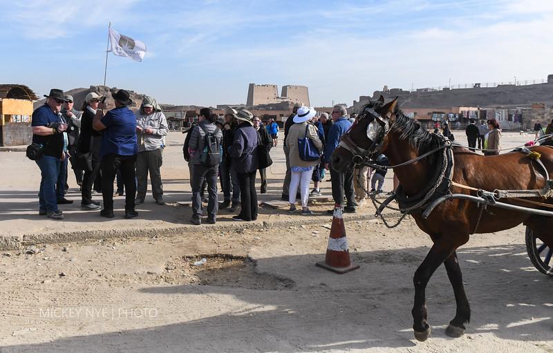 020820 Egypt Day7 Edfu-Cruze Nile-Kom Ombo-5976.jpg