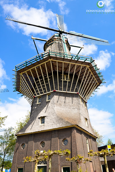 The only windmill in town.jpg