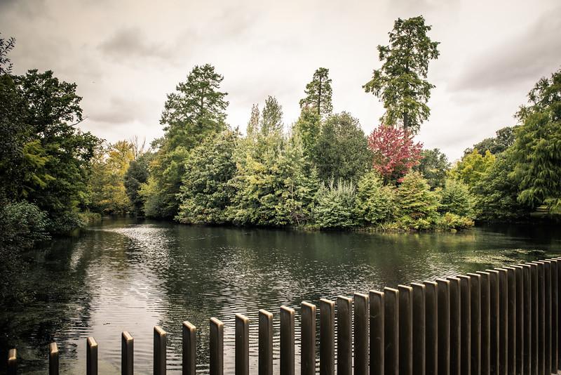 Sackler Crossing, Kew Gardens