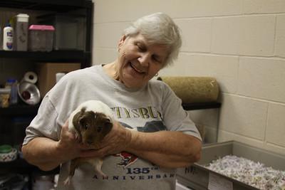 Animal Rescue League
