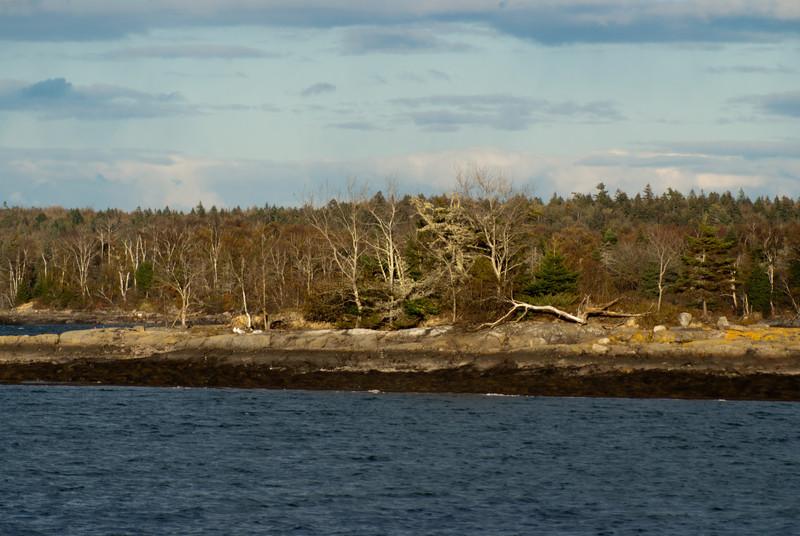 Maine Vacation-02910.jpg