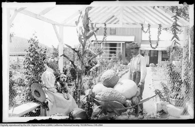 Mrs. Etta Kadish, a Woman Farmer of Garvanza