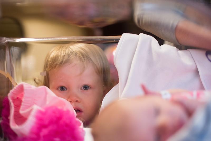 Rose_Maternity-67.jpg