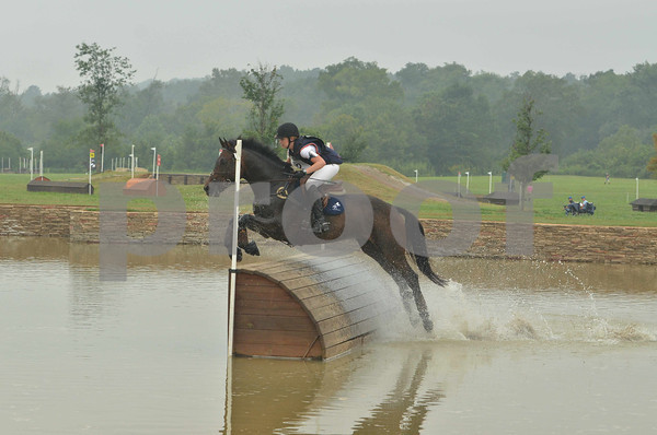 ALEXANDRA GREEN AND FERNHILL CUBALAWN #2