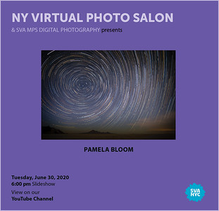6-30-2020 Virtual Salon