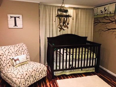 2018 12-10 Future Baby Room for Tyler and Andrea's Baby to Bee