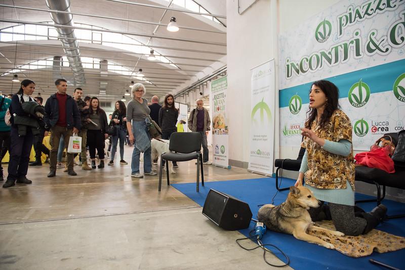 lucca-veganfest-conferenze-e-piazzetta_3_007.jpg