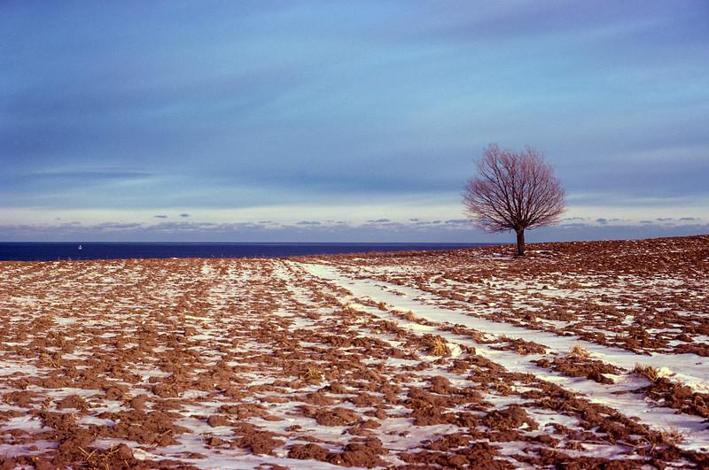 1973_01 Wisconsin Field.jpg