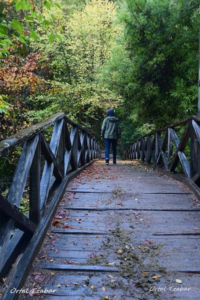 דמות על הגשר.jpg