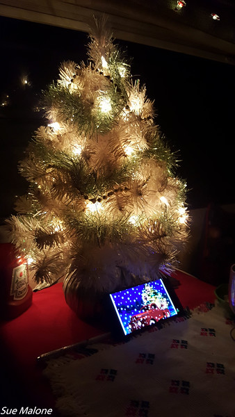 12-18-2020 Campfire and Christmas Dinner-10.jpg