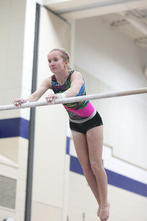 High School Gymnastics 2013-14