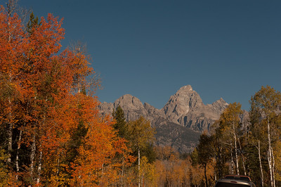 Fall colors in the Grand Tetons