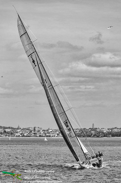 20121201_waitemata_harbour_0149-Edit-Edit.jpg