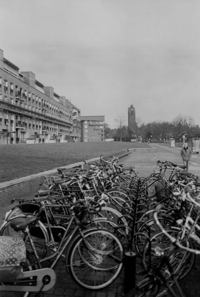BW fietsen in Zeist.jpg