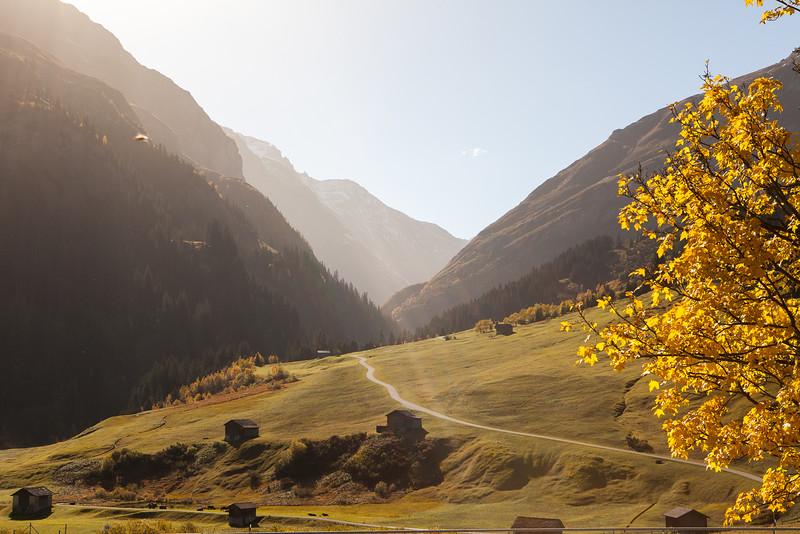Herbst-im-Rheinwald-D-Aebli-018.jpg