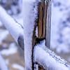 SnowSandbridge-010