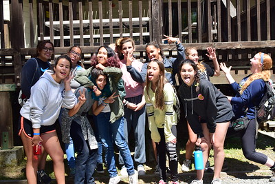 Session 3 Cabin Photos 2017