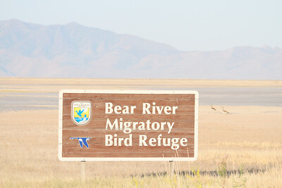 Wildlife Refuges and Parks