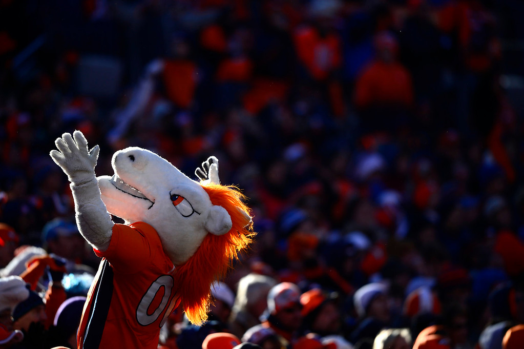 . Broncos mascot Miles cheers with the crowd during the first quarter. The Denver Broncos take on the San Diego Chargers at Sports Authority Field at Mile High in Denver on January 12, 2014. (Photo by AAron Ontiveroz/The Denver Post)
