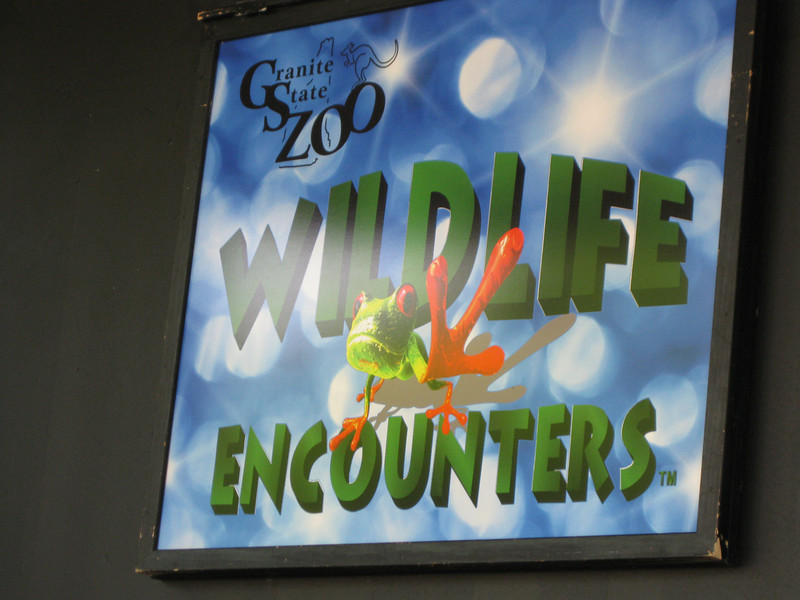 The 4:00pm Wildlife Encounters show.