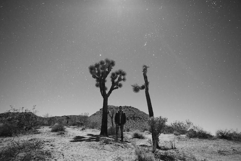 Joshua Tree-6.jpg