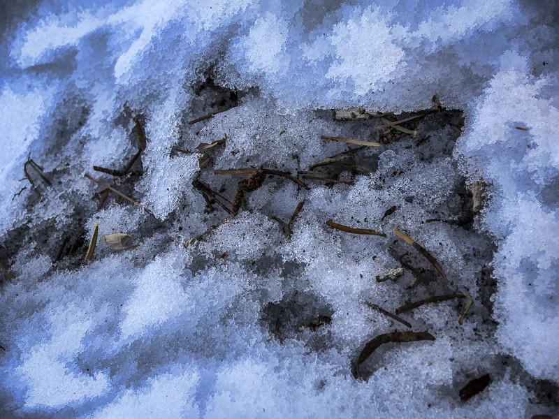 December 29 - Snow flakes in mammoth Lakes_ CA.jpg