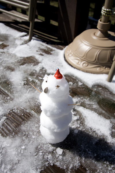 March 1st 2009 - Snowman made by Chloe and Dad.