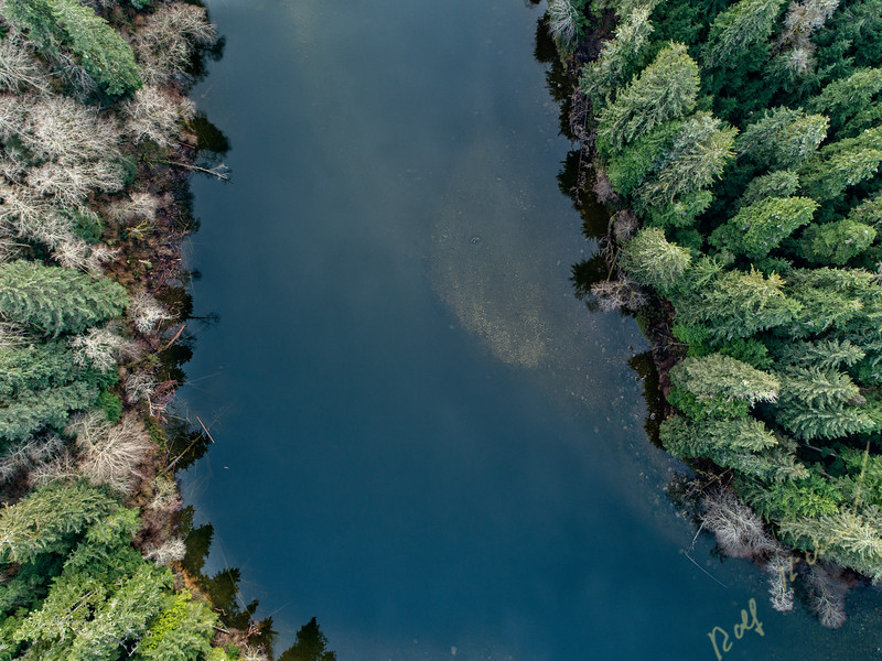 Drone aerial view of Nimpkish River on northern Vancouver Island, British Columbia, Canada.