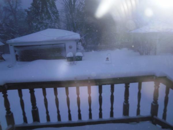 Blizzard Jan 2011