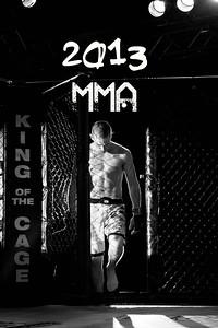 2013 Fight Album