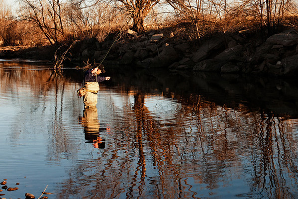 Fly Fishing on Poudre River