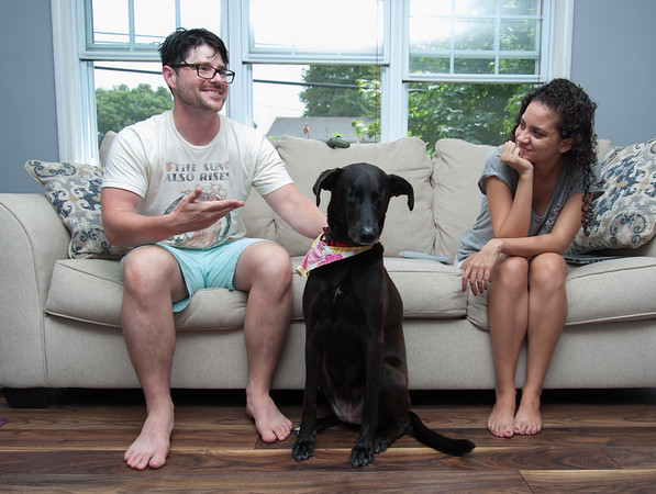 08/01/18 Wesley Bunnell | Staff Robert Genuario and Samela Santana at home with their newly adopted dog , Buddy, a blind 8 year old Labrador retriever. Due to glaucoma both of Buddy's eyes required surgery and removal while up for adoption at the Connecticut Humane Society's Newington location.