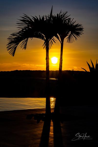 2 palm sunset