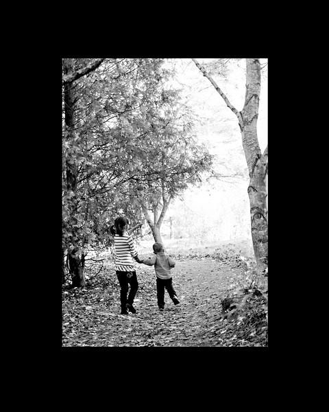 forest walk 8x10.jpg