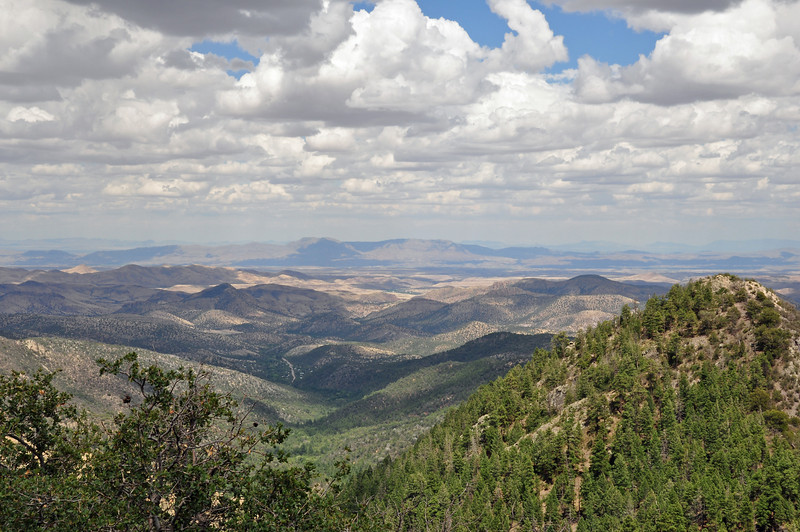 The top of Emery Pass in NM.