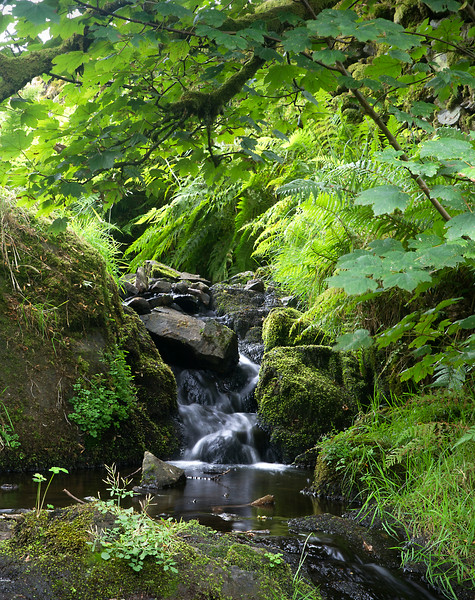 Tom Gill small waterfall.jpg