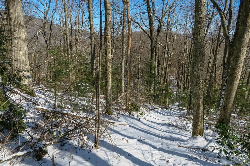 Green Knob Trail -- 4,050'