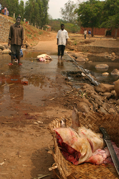 Mulanje - Butchers in River.jpg
