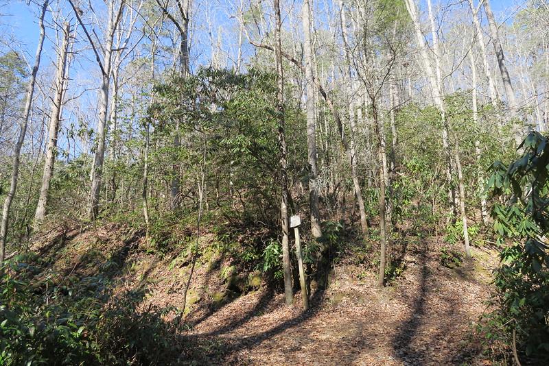 Goldmine Loop-Campsite 67 Trail Junction