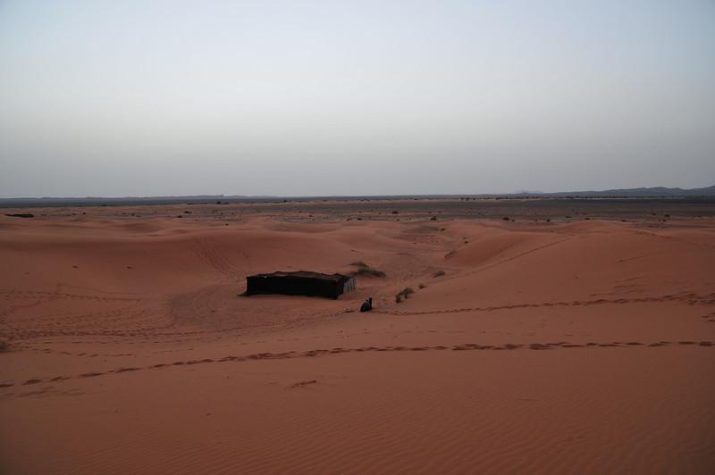 day4-SaharaCamp-44.jpg