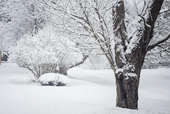 Snow Day- Jan 18, 2014
