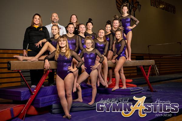 Gymnastics 2019-2020