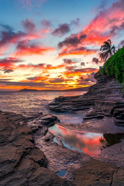Leahi Paradise