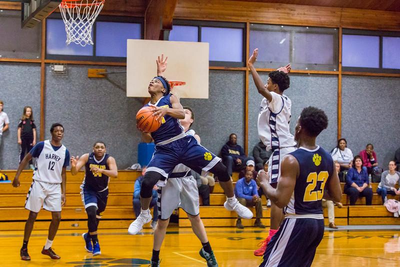 BV Basketball